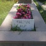 Saltuk Alp